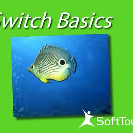 switchbasics_title