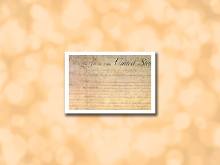 U.S. Government: Constitutional Amendments Product Graphic